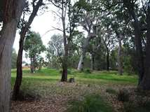 Lot 53 Vintners Drive, Quindalup