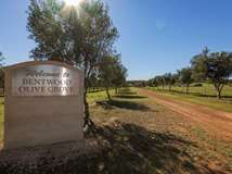 34732 Brand Highway, Greenough
