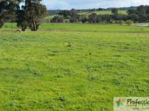 Lot 104 Banks Road, Boyup Brook