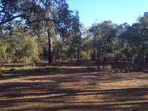 3820 Phillips Road, Mahogany Creek