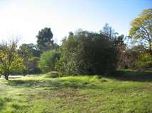 Lot 164 Dickson Court, Mount Helena