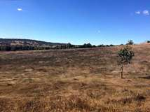 Lot 14 Toy Rd, Bindoon