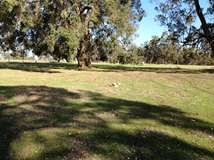 Lot 220 Kaufmann close, Boyup Brook